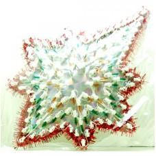 Гирлянда - Звезда  118 L